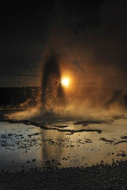 Sawmill Geyser Is Backlit, Yellowstone National Park, Wyoming by Keith Ladzinski