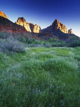 Spring Sunset at Zion National Park, Utah by Keith Ladzinski