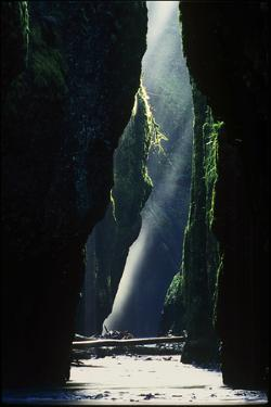 Sunbeams Shine in Oneonta Gorge, Oregon by Keith Ladzinski