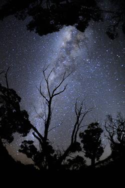 The Night Sky with the Milky Way over Grampians National Park by Keith Ladzinski