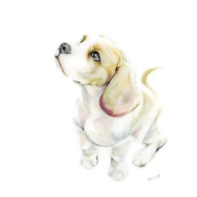 Benji The Beagle