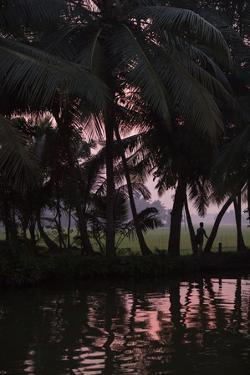 Sunset Creates a Beautiful Pink Hue in the Backwaters by Kelley Miller