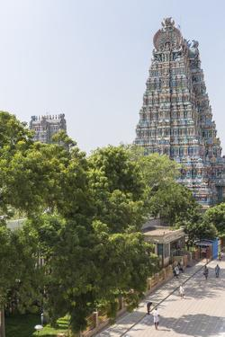 The South Tower of the Meenakshi Amman Temple Rises High Above the Street by Kelley Miller