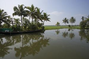 Water and Fields Meet in the Backwaters by Kelley Miller