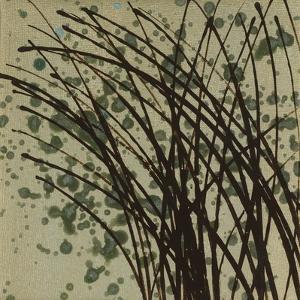 Wind & Rain 14 by Kelsey Hochstatter