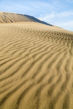https://imgc.allpostersimages.com/img/posters/kelso-dunes-ii_u-L-Q11UOJY0.jpg?p=0