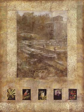 Botany Journal I by Kemp