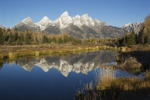 Grand Tetons Reflecting in Beaver Pond by Ken Archer