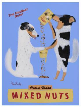 Mixed Nuts, Australian Shepherds by Ken Bailey