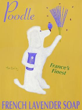 New Poodle Lavender by Ken Bailey