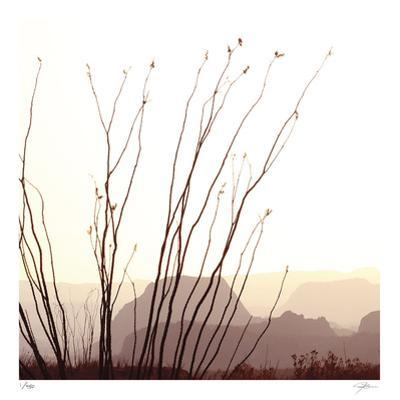 Chichuahuan 1 by Ken Bremer