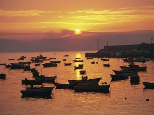 Fishing Boats in Harbour, Finisterre, Galicia, Spain, Europe by Ken Gillham