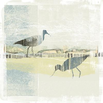 Coastal Birds I
