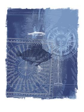 Cyanotype I by Ken Hurd