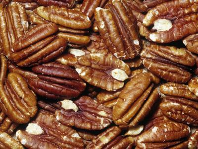 Halved Pecan Nuts (Carya Pecan), Mexico And Southern USA by Ken Lucas