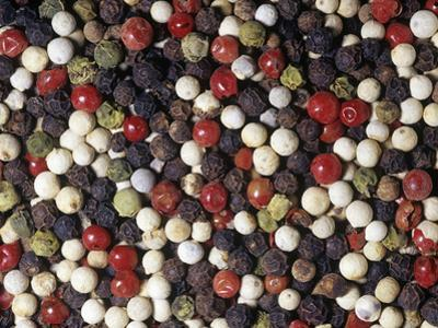 Mixed Varieties of Peppercorn or Pepper Fruits for Use as a Spice or Herb (Piper Nigrum) by Ken Lucas
