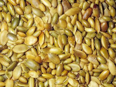 Roasted Pumpkin Seeds or Pepitas (Curcurbita), Native To North And Central America by Ken Lucas