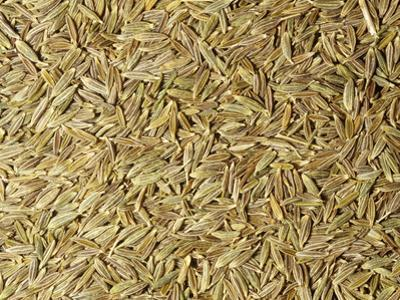 Whole Dried Cumin Seeds Used as a Spice or Herb (Cuminum Cyminum) by Ken Lucas