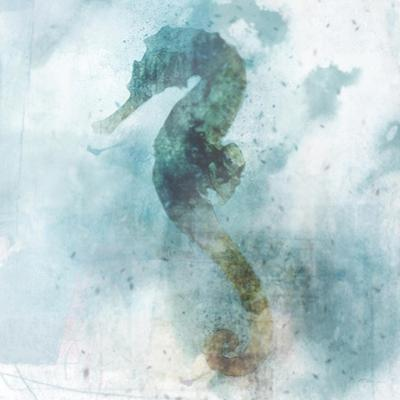 Coastal Mist Seahorse by Ken Roko