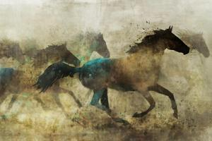 Horses, Wild and Free by Ken Roko