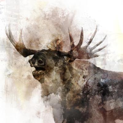 Moose Call by Ken Roko