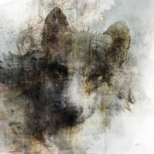 Wolf Call by Ken Roko