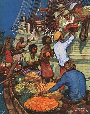 Taking on Fruit Supplies by Kenneth D Shoesmith