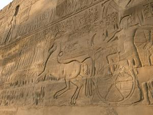 A View of Hieroglyphics on the Wall of Karnak Temple by Kenneth Garrett