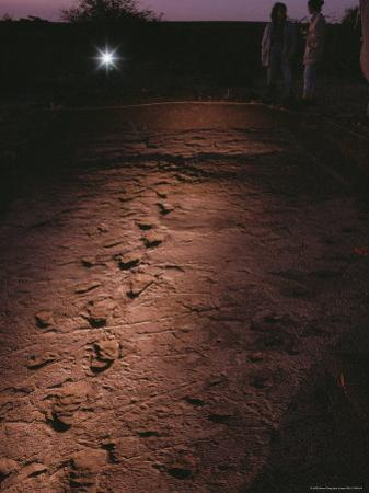 Fossilized Tracks Left by Primates 3.6 Million Years Ago