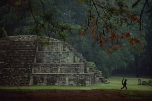 Mayan pyramidal tomb showing silhouetted Pancho the monkey who lives at the site. by Kenneth Garrett