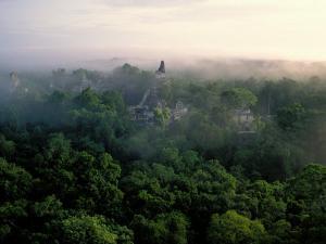 Tikal, Maya, Guatemala by Kenneth Garrett