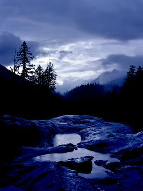 A Rainy Day in the Mountains on Vancouver Island by Kenneth Ginn