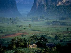 An Early Morning View of a Beautiful Valley in Cuba's Tobacco Region by Kenneth Ginn