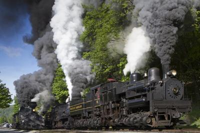 Shay Locomotive #11 (1923), Heisler #6 (1929), and Shays #5 (1905) and #6 (1945) by Kent Kobersteen