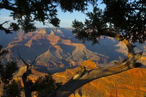 The Grand Canyon at Sunset from Mather Point on the South Rim by Kent Kobersteen