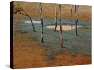 Marais by Kent Lovelace