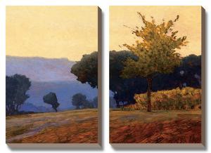 Meadow by Kent Lovelace
