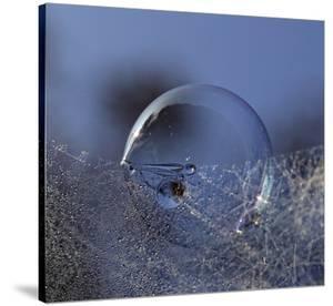 Blue Bubble Morning by Kent Mathiesen