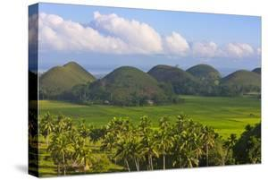 Chocolate Hills, Bohol Island, Philippines by Keren Su