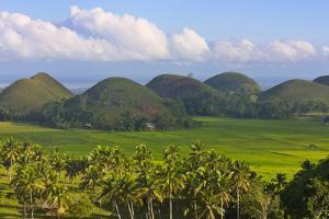 Chocolate Hills, Bohol Island, Philippines by Keren Su