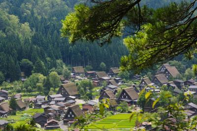 Gassho-zukuri houses and farmland in the mountain, Shirakawa-go, Japan by Keren Su