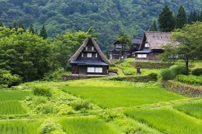 Gassho-zukuri houses in the mountain, Ainokura Village, Gokayama, Japan by Keren Su