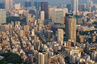 High-rises in downtown Tokyo, Japan by Keren Su