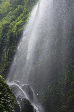 Madakaripura Waterfall, East Java, Indonesia by Keren Su