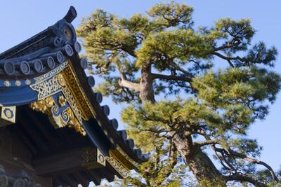 Nijo Castle, Kyoto, Japan by Keren Su