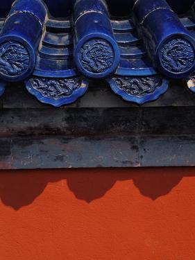 Roof Tiles in Forbidden City by Keren Su