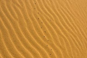 Sand patterns of the Singing Dunes, the only sand dune in Kazakhstan, Altyn-Emel National Park by Keren Su