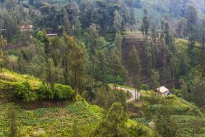 Village in the Mountain, Bromo Tengger Semeru NP, East Java, Indonesia by Keren Su