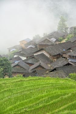 Village with rice terrace in the mountain in morning mist, Jiabang, Guizhou Province, China by Keren Su