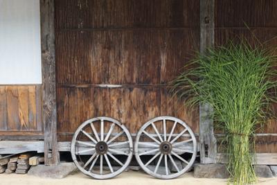 Wheel with Gassho-zukuri house, Ainokura Village, Gokayama, Japan